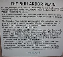 Nullarbor Information by Paul Birch