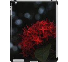 Flame Touch iPad Case/Skin
