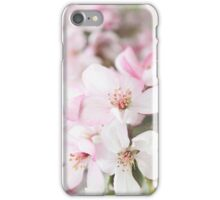 *** ABUNDANCE ABOUNDS *** iPhone Case/Skin