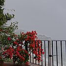 Rain all over - Lluvias by PtoVallartaMex