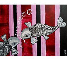 2 Koi Fish In Love Photographic Print