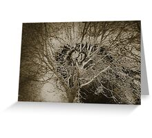 frosty tree sepia toned abstract Greeting Card