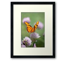 Julia on Clover Framed Print