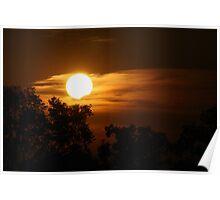 Nestled Sun Poster