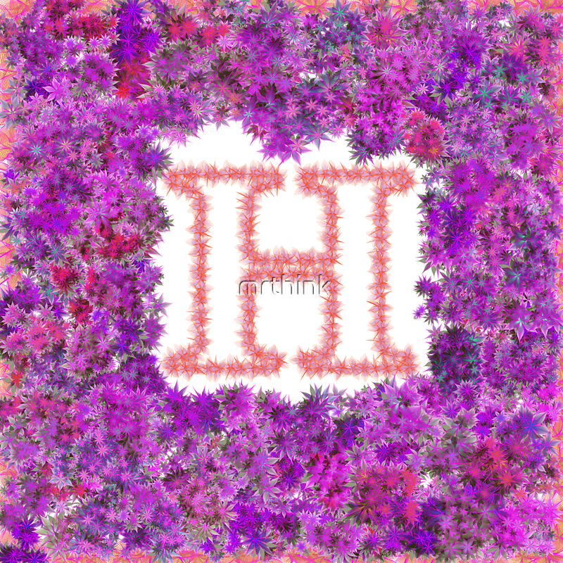 """H' Is For Hydrangea by mrthink"