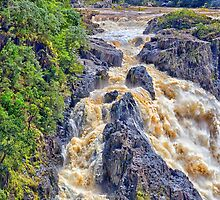 Raging  water over Barron Falls by hereswendy