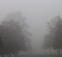 Into The Mist by phildesjardins