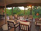 Safari sunset by Explorations Africa Dan MacKenzie