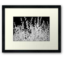 Macro, Spring Leaves, Lindinny Woods, Scottish Borders Framed Print