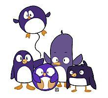 Penguin Parade Photographic Print