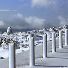 Winter at Mt Wellington by Jacqui7