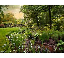 Summer Creek Photographic Print