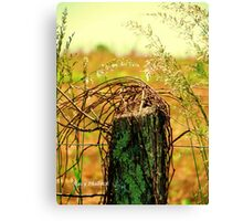Country Road Fence Post Canvas Print