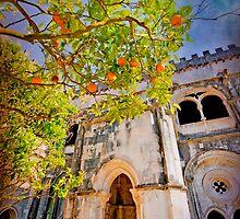 Claustro. Mosteiro by terezadelpilar~ art & architecture