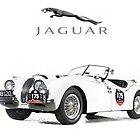 Jaguar XK 120 by garts