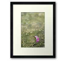 Cracks in the Elegance Framed Print