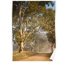 Gums in the mist Poster