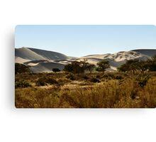 Soft Colour Dunes, Namibia Canvas Print