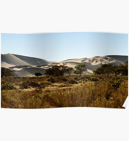 Soft Colour Dunes, Namibia Poster