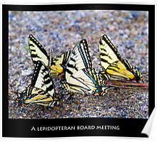 A Lepidopteran Board Meeting Poster