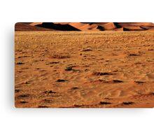 Closeup Sand, Namibia Canvas Print