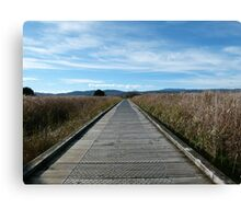 As Far As The Eye Could See Canvas Print