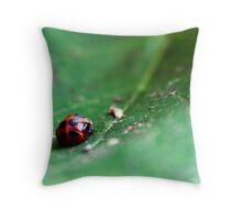 Ladybug Pupa Throw Pillow