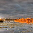 Autumn Glow. by trevorb
