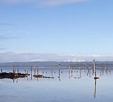Springdale Beach, Wilson Inlet, Denmark, WA by pennyswork