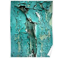 Green Turquoise Peeling Paint Poster