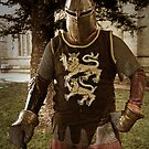 Knight At Arms by TonyCrehan