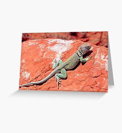 Mountain Boomer Greeting Card