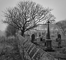 Misty Cemetery by Violaman