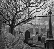 Misty Cemetery Sticker