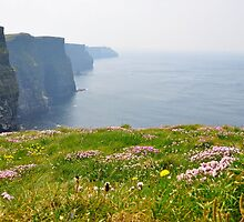 The Ireland Series-The Cliffs of Moher by Brandi  Reynolds