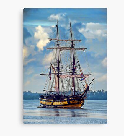 Pirates ! Canvas Print