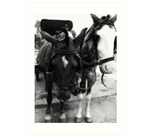 Horse Carriage Art Print