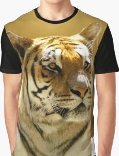 Golden Tiger Graphic T-Shirt