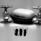 Old Sink by Danielle  La Valle