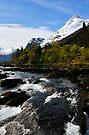 View up river, Olden, Norway by David Carton