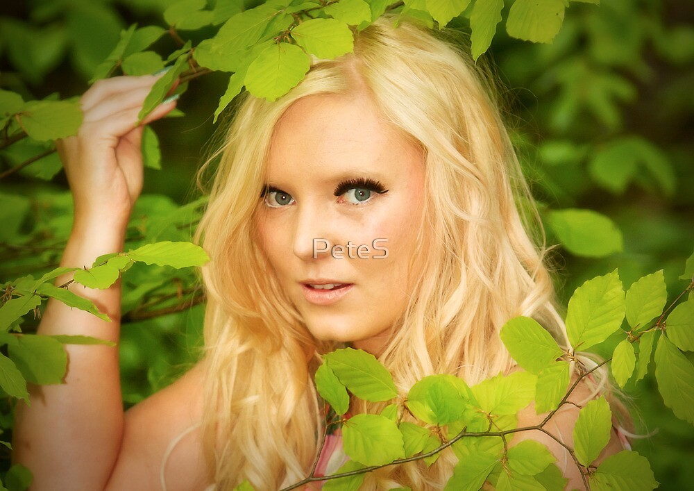 If you go down to the woods today ...... by Peter Stone