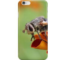 Fly in the Marigolds - Daily Homework - Day 21 - May 28, 2012 iPhone Case/Skin