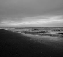 #1134  Clam Beach -  Arcata, Ca.   -  May, 2012 by MyInnereyeMike