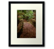 Mt Wilson - Follow Me Framed Print