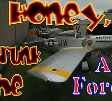Honey, I Shrunk The Air Force, Tyabb 2012 by muz2142