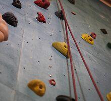 Climbing Wall by Henry Bird