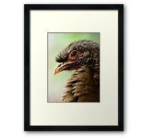 The Ugly Pretty Framed Print