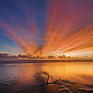 Streaks of Dawn  by Ian  Clark