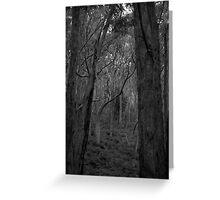 Scary Trees- Lobethal Bushland Greeting Card