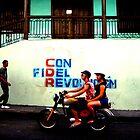 Viva la Revolucion!  by dher5